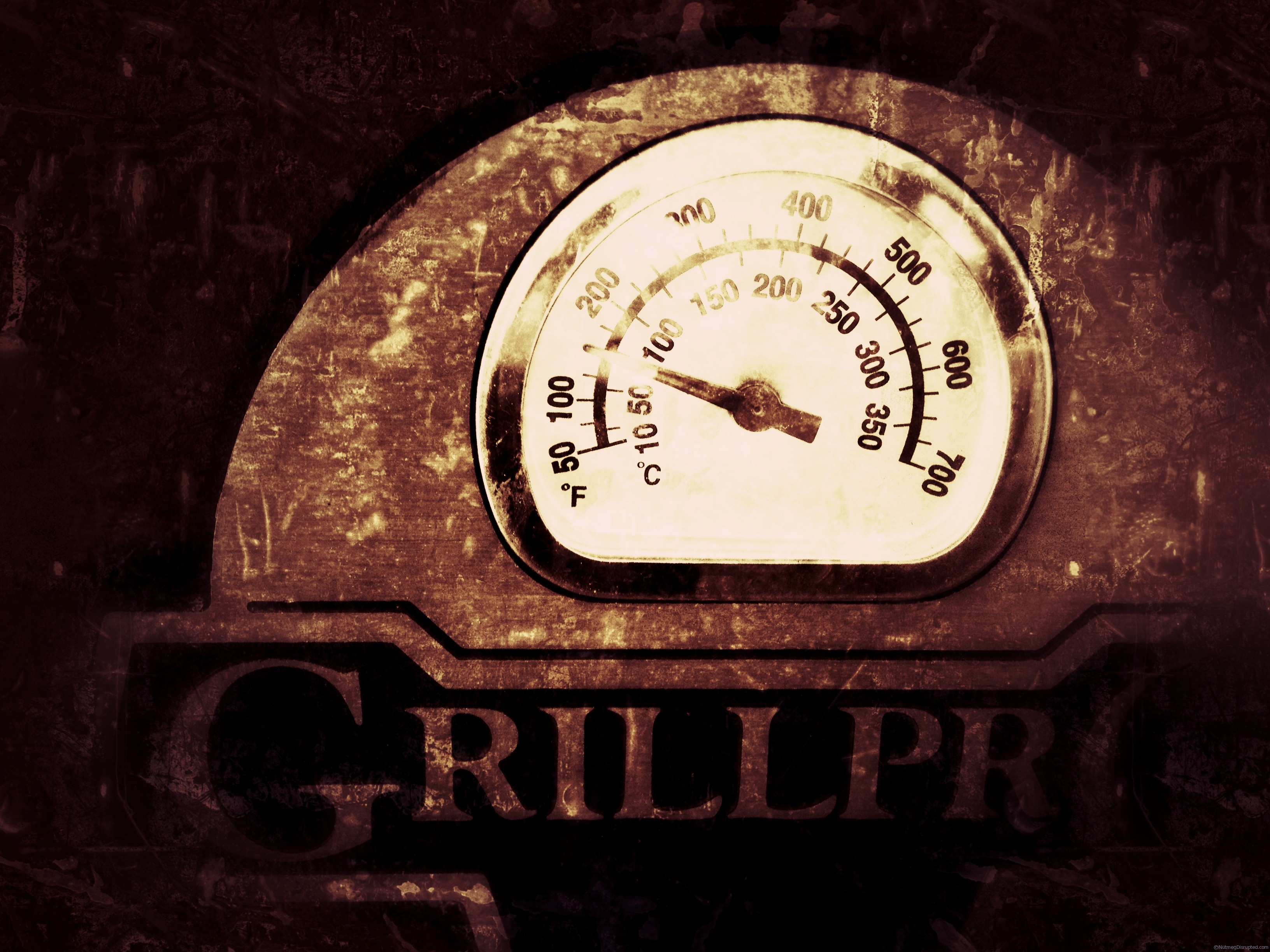 grill pro smoker in the Nutmeg Disrupted kitchen