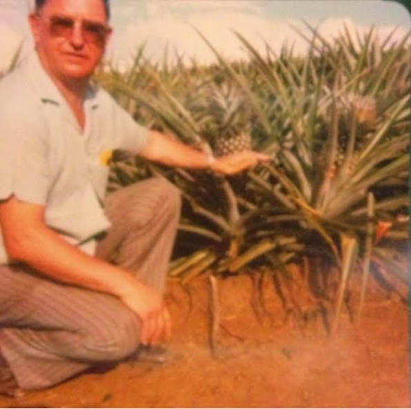 Gido in the pineapple fields of Hawaii.