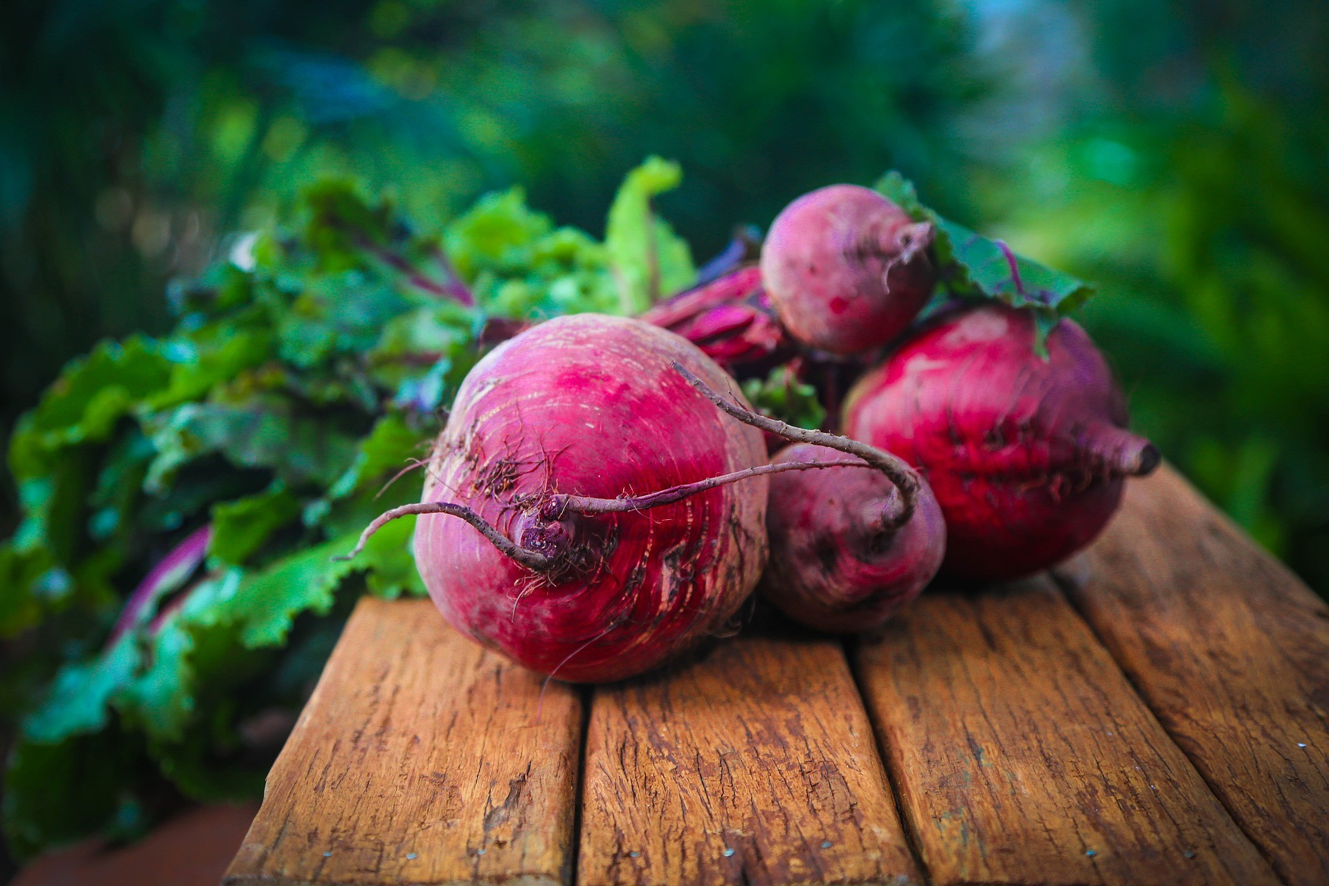 Fresh beets from the garden.