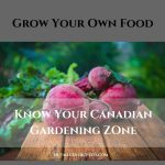 Grow Your Own Food: Know Your Canadian Gardening Zone